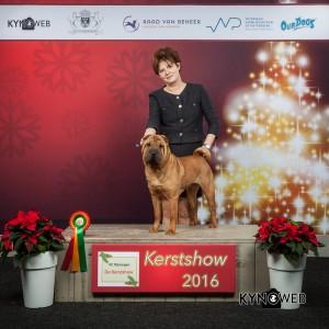 kerstshow-2016